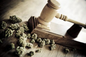 New Jersey Supreme Court Permits Claim for Violation of the State's Anti-Discrimination Law for an Employee's Legal Use of Marijuana